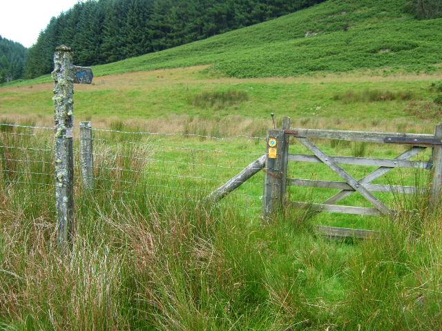 Bridleway to Bryn Crwn