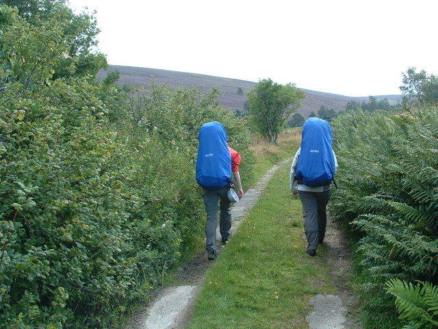 Walkers on the Speyside Way spur.