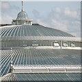 NS5667 : Kibble Palace : Week 33