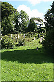 SX0882 : Camelford: Lanteglos churchyard by Martin Bodman