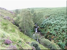 O0920 : Ballymorefinn Hill Waterfall by JP