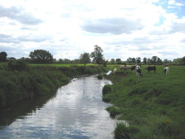 The Cherwell near Pewit Farm