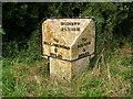 TF1026 : Milestone, just southwest of Dunsby by Brian Green