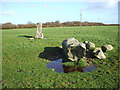 SW7720 : Crousa Common Standing Stones by Michael Murray