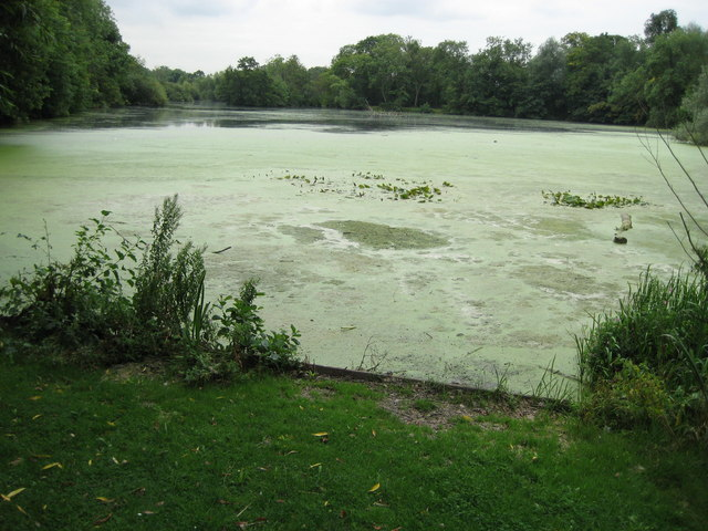 Cowley: Little Britain Lake