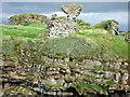 G8365 : Remains of Kilbarron Castle by louise price