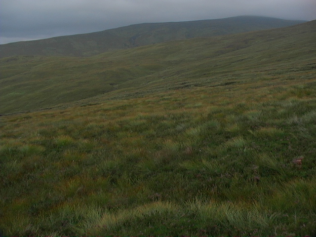 Rough mountain grassland east of Allt a' Bhodaich