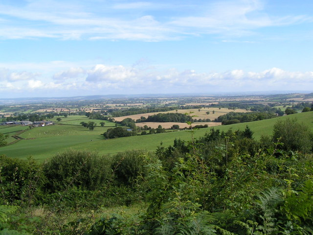 View from Dorstone hill