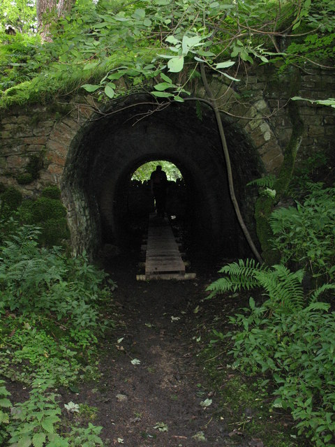 Booze Wood tunnel