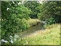 SK1648 : River Dove by James Allan