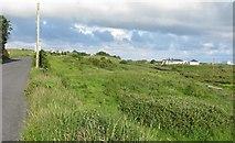 R1096 : Meadow along the R478 road by C Michael Hogan