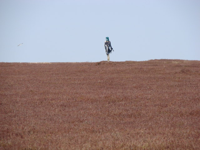 Lonely Scarecrow on Blanchland Moor