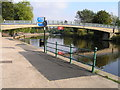 SJ4912 : River Severn, Castle walk footbridge by kevin skidmore