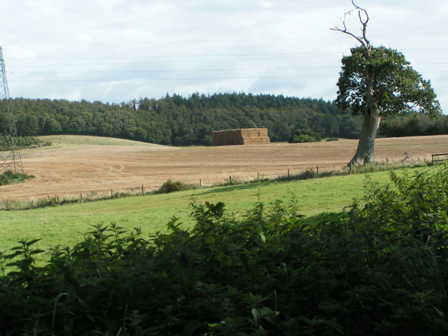 Haystack, Willsworthy Farm