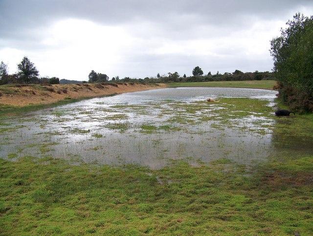 Waterlogged Area Near Abbots Well Maigheach Gheal