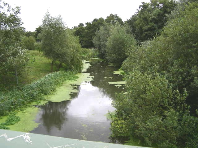 Tranquil River Roding