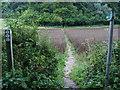 SU9194 : Footpath into Brook Wood by Shaun Ferguson