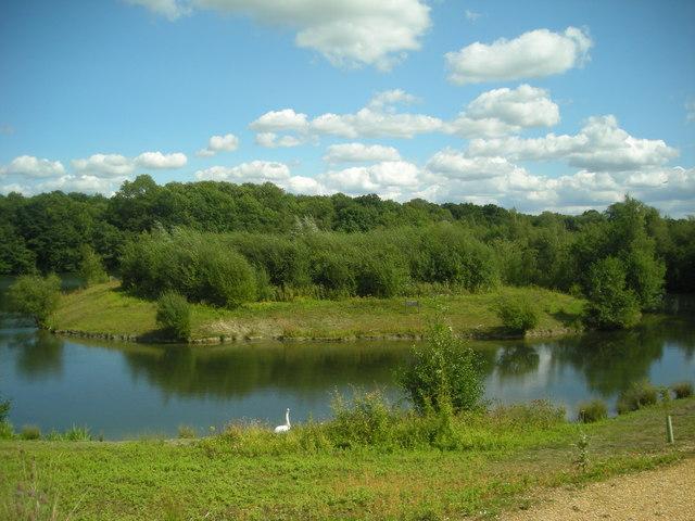 Newdigate Brickworks Nature Reserve