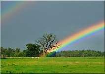 SJ2638 : Somewhere Over The Rainbow by Rod Trevaskus
