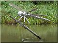 SP2466 : Dragonfly sculpture at Hatton Locks, Warwickshire : Week 36