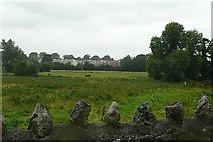 M9942 : Pasture at Bellnamullia by Graham Horn