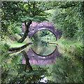 SP1373 : Stratford Canal, Illshaw Heath, Warwickshire : Week 36