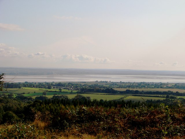 Severn from The Birches, Aylburton