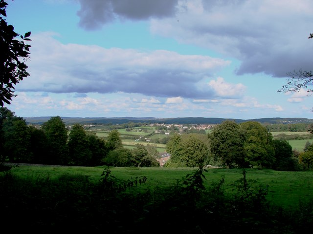 Bream & Cinderford from above Prior's Lodge