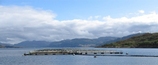 Salmon Fish Farm on Loch Alsh