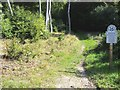 SU8397 : Bradenham National Trust woodland by Shaun Ferguson
