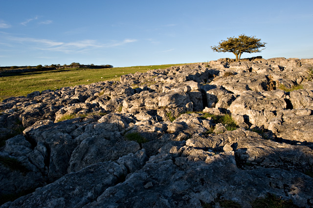 Limestone pavement on Holmepark fell