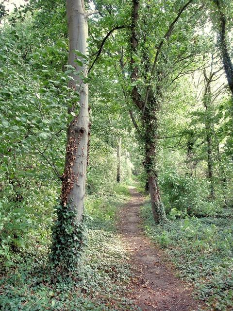 Saighton - bridleway 10