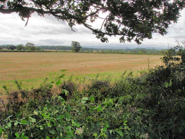 Saighton - view from bridleway 10