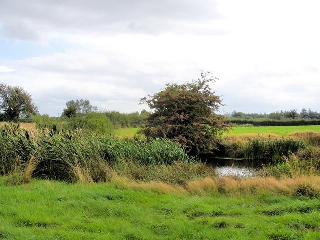 Rowton - footpath 5
