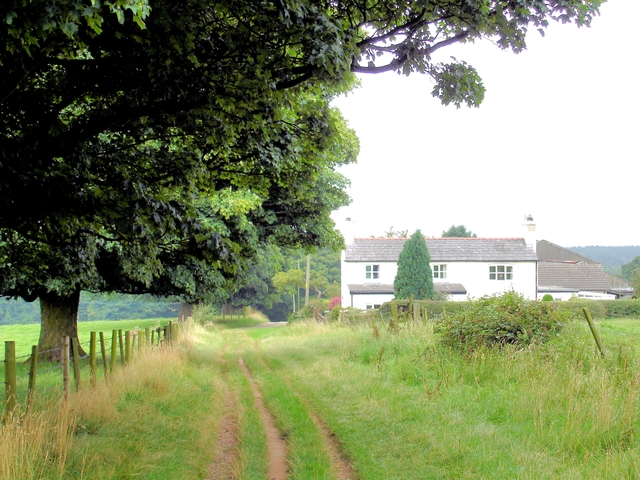 Delamere - view towards Eddisbury Lodge Cottage