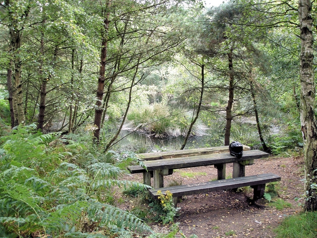 Manley - Delamere Forest - picnic table near the Sandstone Trail