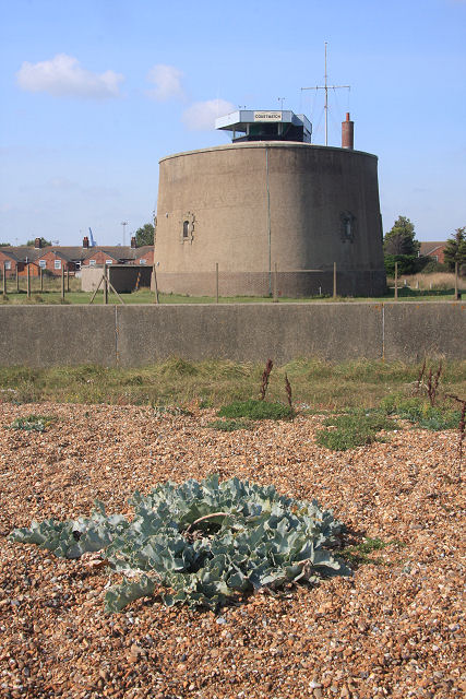 Martello Tower P