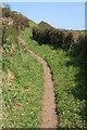 SW7214 : Landewednack: South West Coast Path 2 by Martin Bodman