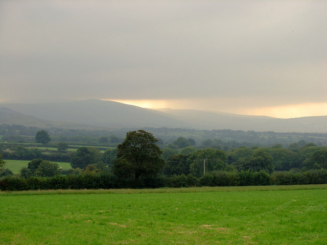 Field near Annedd-wen, Eglwys-wen