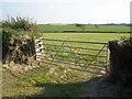 SS2604 : Pasture, near Shernick Farm by Roger Cornfoot