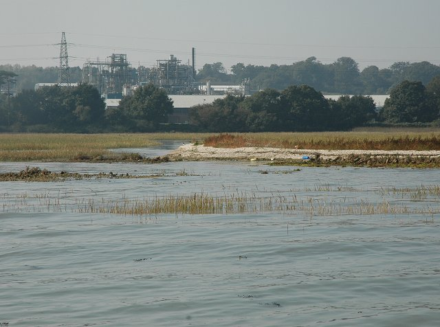 Saltmarshes between Hythe and Fawley, Southampton Water