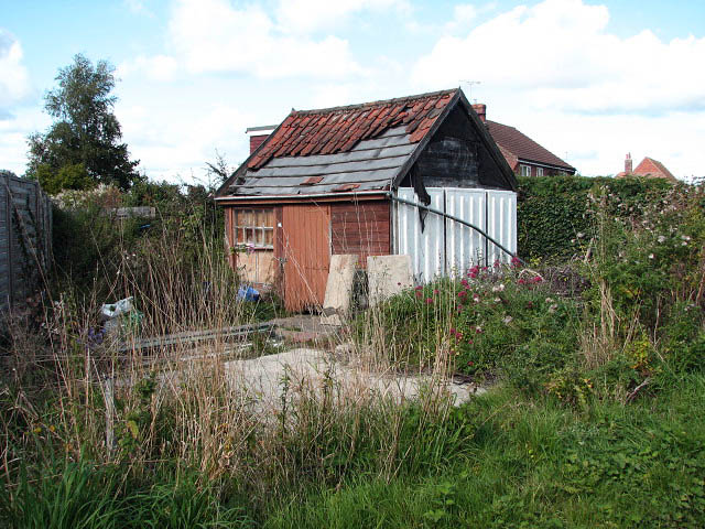 Dilapidated Shed In Back Garden 169 Evelyn Simak Cc By Sa 2