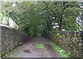 SE0318 : Shaw Lane - Rishworth by Betty Longbottom