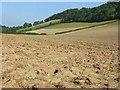 SU8196 : Farmland, Slough Bottom by Andrew Smith