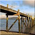 J3979 : Jetty, Holywood Yacht Club : Week 39