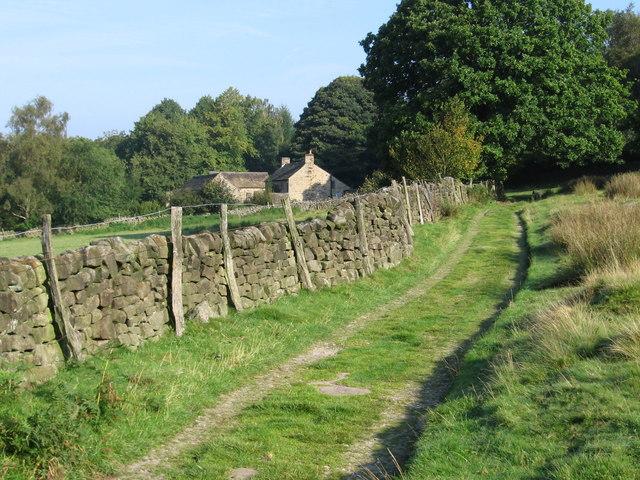 Grindleford - track near Rough Wood