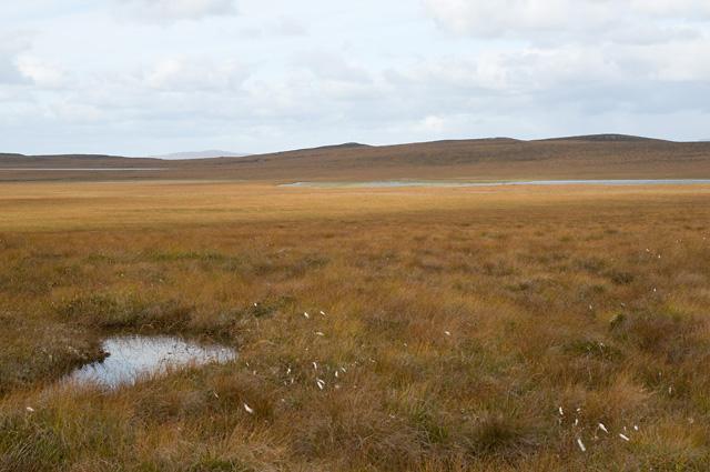 Boggy Moorland and Clàr Loch Mòr
