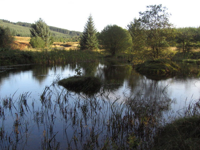 Pond beside the Blacklyne