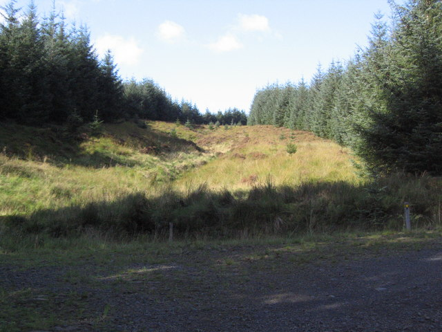 Firebreak in Kershope forest