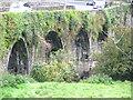 S6139 : Kilmacshane bridge by liam murphy